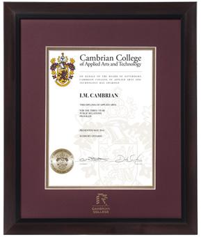 Cambrian diploma frame
