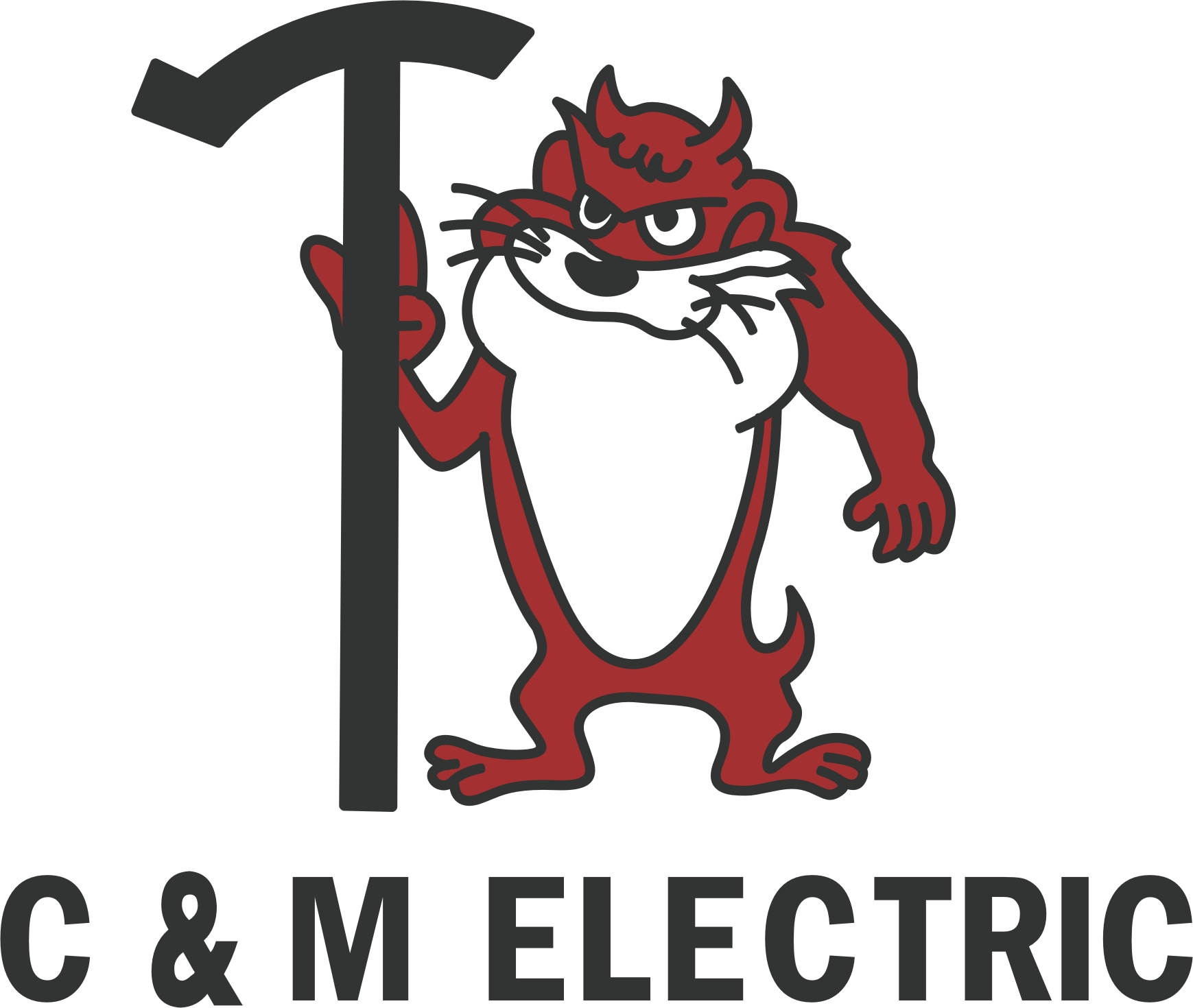 C & M Electric Limited