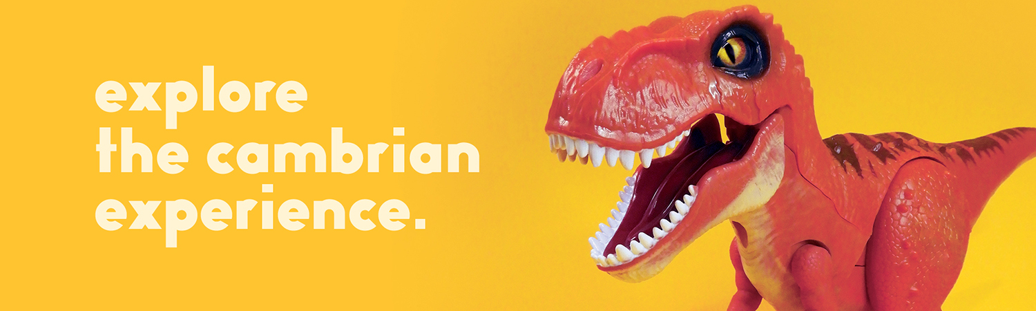 Explore the Cambrian Experience
